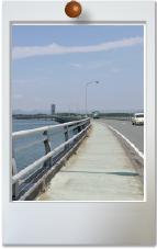 静岡県西遠地区サイクリングロード